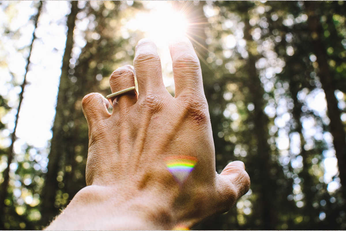 hand reaching to sunlight