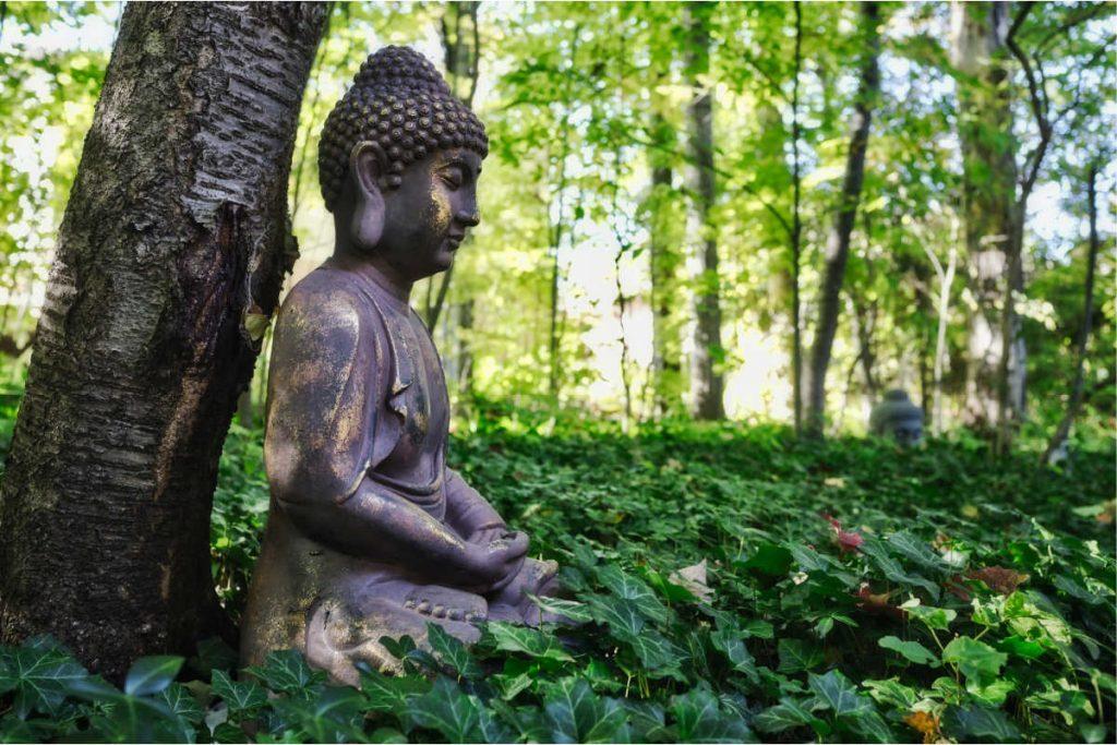 buddha statue under tree