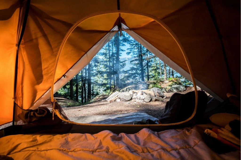 view out tent door into wilderness