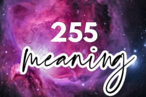 255 meaning